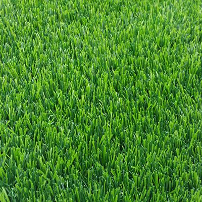 aileach artificial grass
