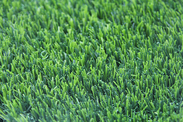 order your artificial grass online